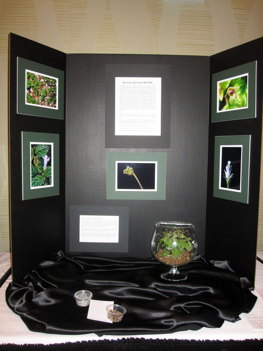 2014 Convention - Class 78 Exhibit of plant material with educational information