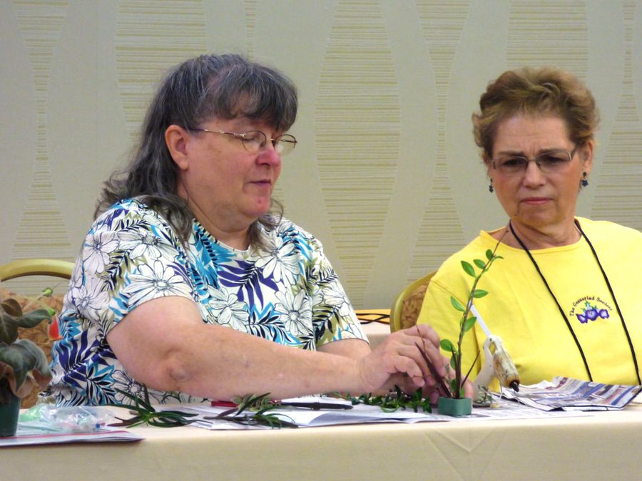 Karyn Cichocki and Jill Fischer demonstrating how to prepare a miniature design