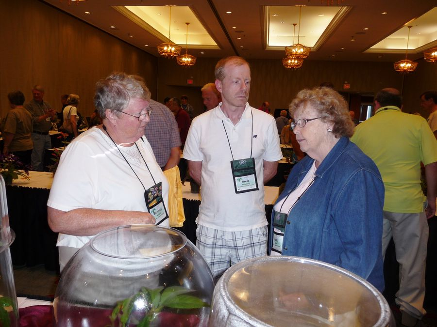 Nancy Kast (right) discussing her entries with Bev Williams and Brett Flewelling