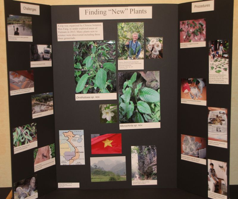 2015 Convention – Educational Exhibits - Class 77 Exhibit illustrating phases of scientific or historical research