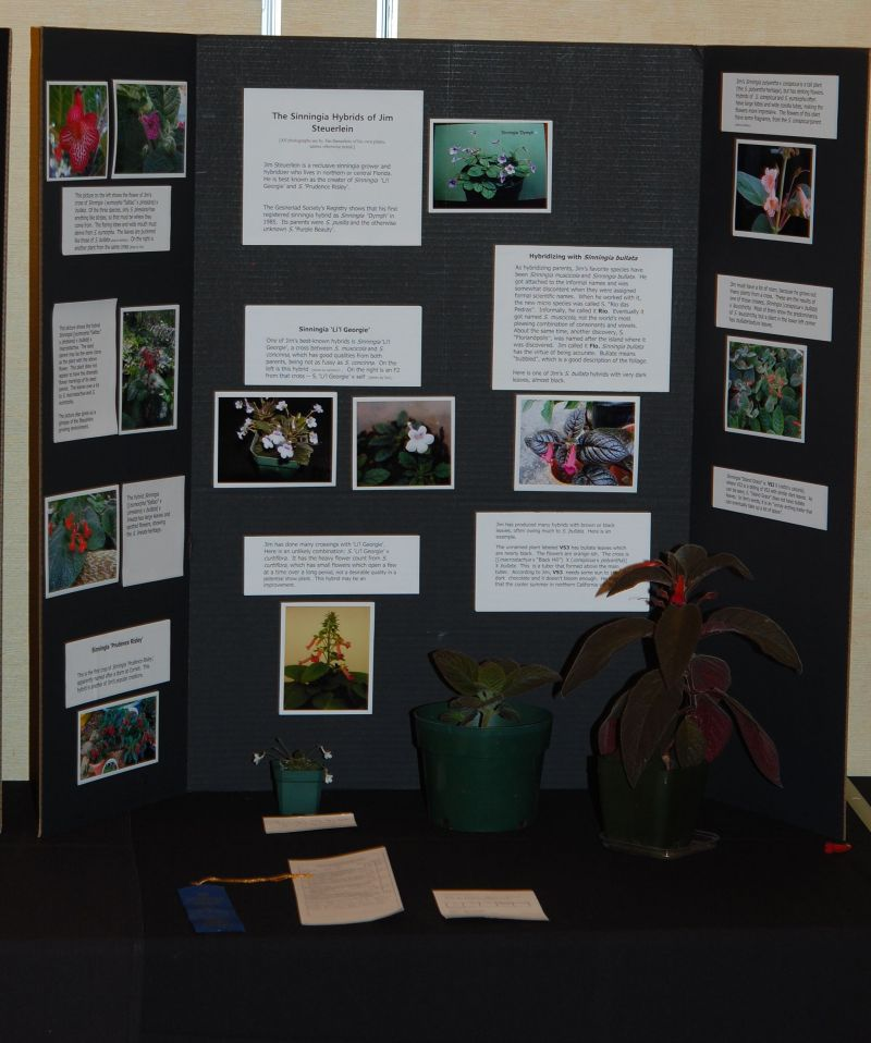 2015 Convention – Educational Exhibits - Class 78 Exhibit of plant material with educational information <br>BEST COMMERCIAL/EDUCATIONAL<br>BEST IN SECTION S – EDUCATIONAL