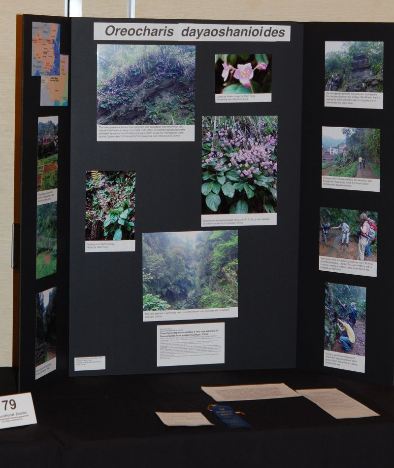 2015 Convention – Educational Exhibits - Class 79 Exhibit of photograph(s) of gesneriad plant material that because of its seasonal nature or rarity in cultivation is not often exhibited live<br>JUDGES AWARD OF MERIT