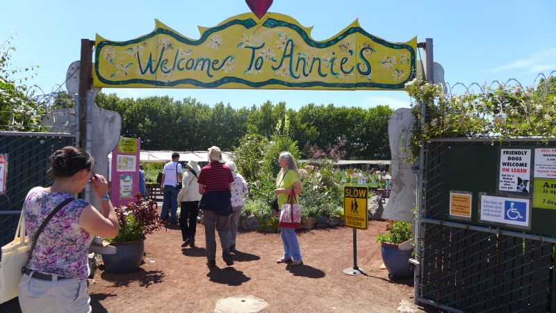 Arriving at Annie's Annuals