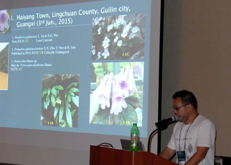 Wen Fang presents an update on the Gesneriad Conservation Center of China