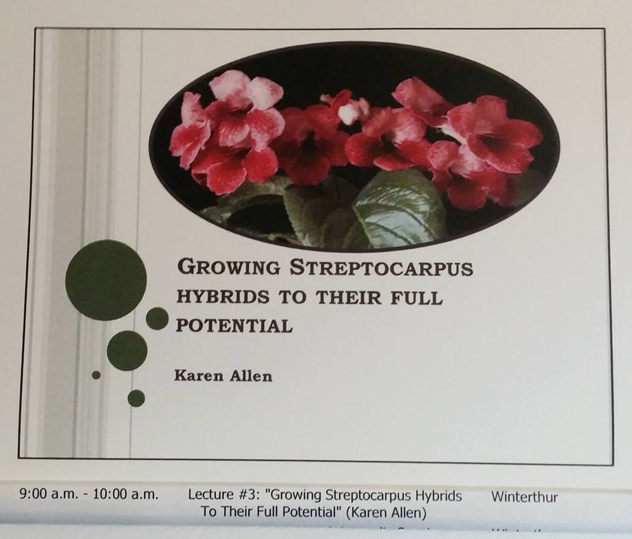 The Streptocarpus presentation by Karen Allen