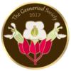 2017 Convention Cloisonné Pin