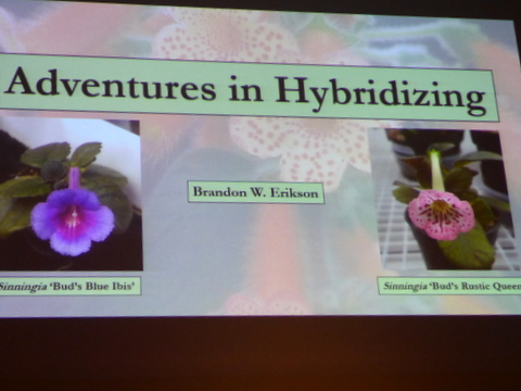 "The GHA program ""Adventures in Hybridizing"""