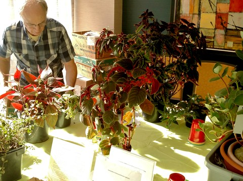 Charles Huston grooming plants in his educational exhibit