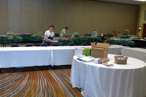 Sales volunteers helping set up the plant sales area