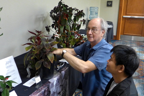 Charles Huston sharing cuttings with Qiu Zhi-Jing at breakdown