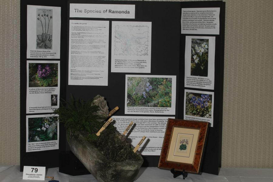 2018 Convention<br>Educational Exhibits<br>Class 79 – Exhibit of plant material with educational information<br>BEST IN THE COMMERCIAL/EDUCATIONAL DIVISION<br>BEST IN SECTION R – EDUCATIONAL EXHIBIT