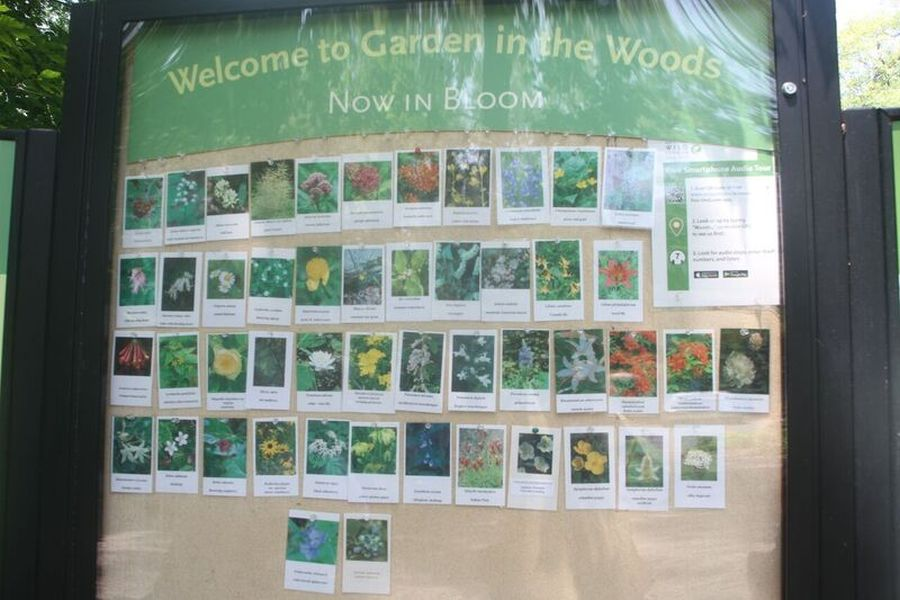 Next stop:  Garden in the Woods