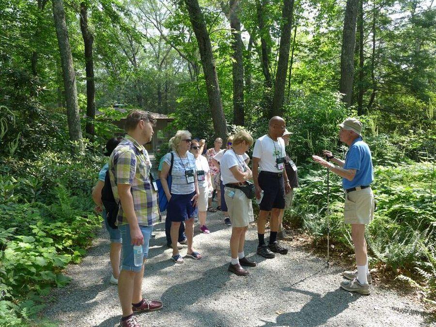 Guided tour through the woodland gardens