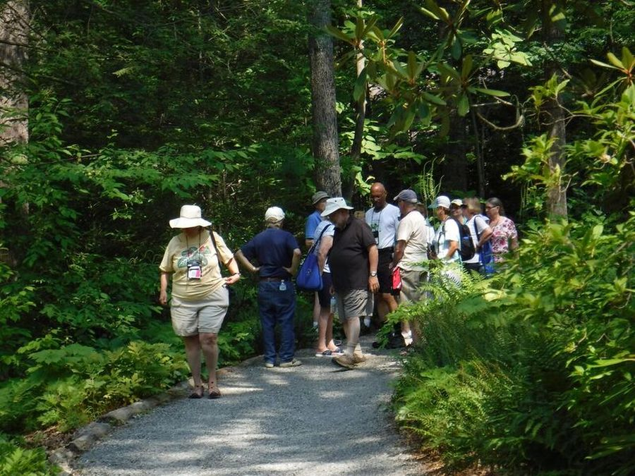 Many woodland garden trails to see