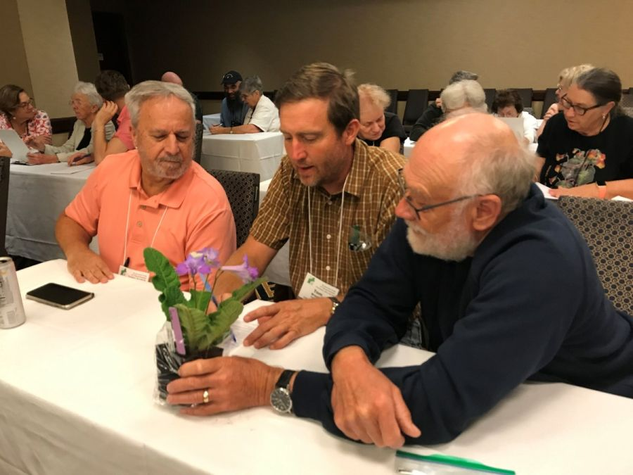 Jim Roberts, Tom Bruning, and Paul Lee practice judging