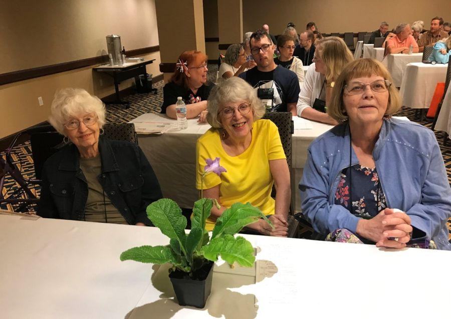 Fay Wagman, Laura Buckner, Barb Festenstein